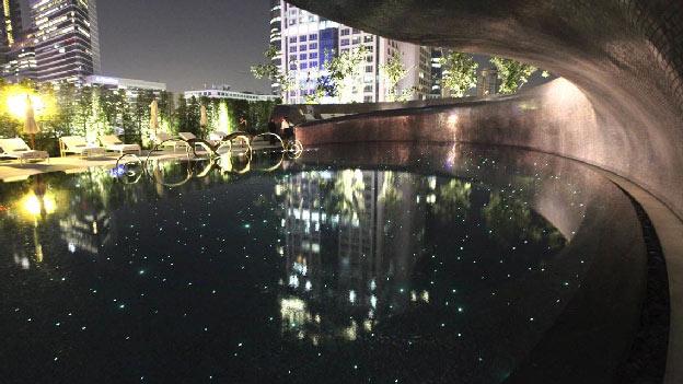 fiber-optic perimeter and points pool illumination